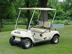 Marketing Golf Cart Florida Offline in Port Charlotte